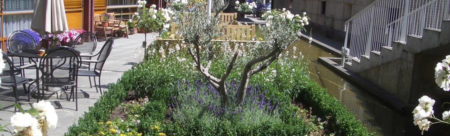 tuinrenovatie haarlem hoveniersbedrijf van der zon